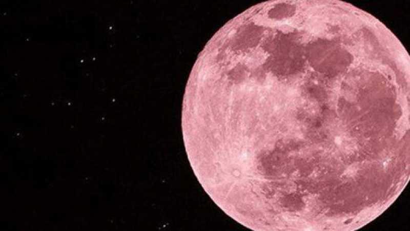 Luna rosa: ¿Qué es, cómo y cuándo se la podrá ver en Argentina?