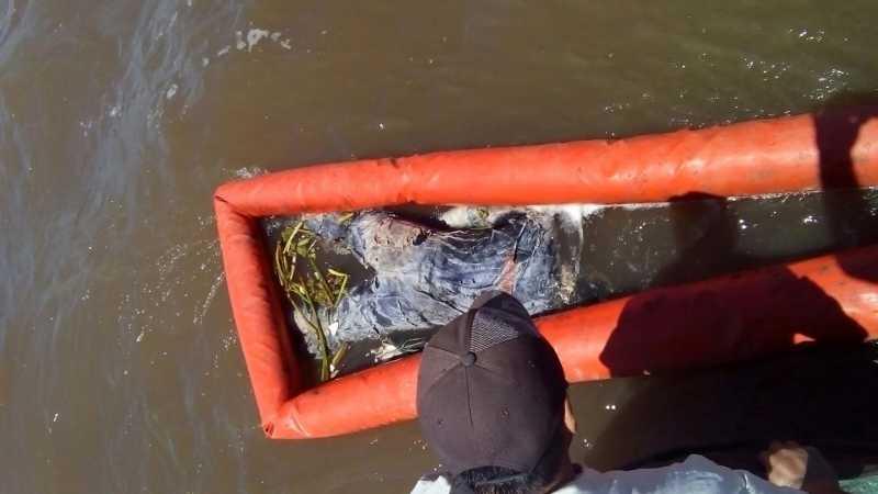 Puerto San Martín: Encuentran un cuerpo en las aguas del Paraná