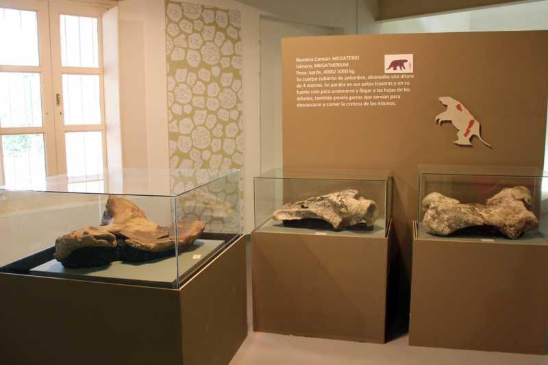 Este viernes reabre con novedades el Museo de Historia Regional