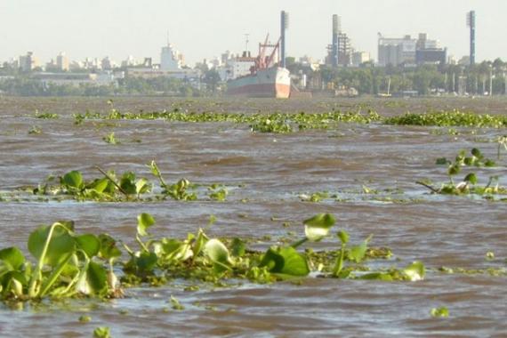 Recomendaciones de Prefectura ante la crecida del Río Paraná