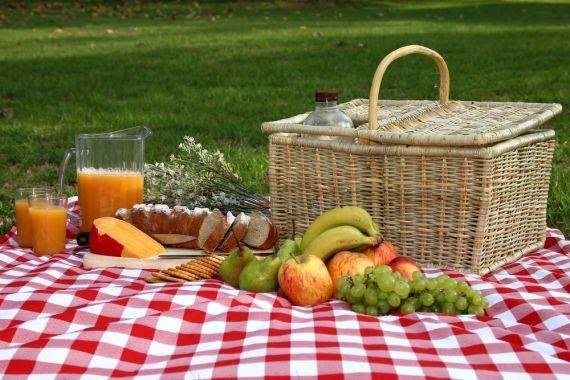 La ASSAL recomienda cómo disfrutar un picnic sin peligro