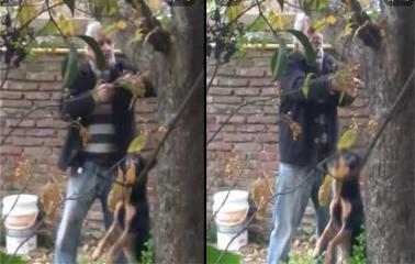Conmoción en Fray Luis Beltrán por un hombre que ahorcó a su perro. Hoy habrá una marcha