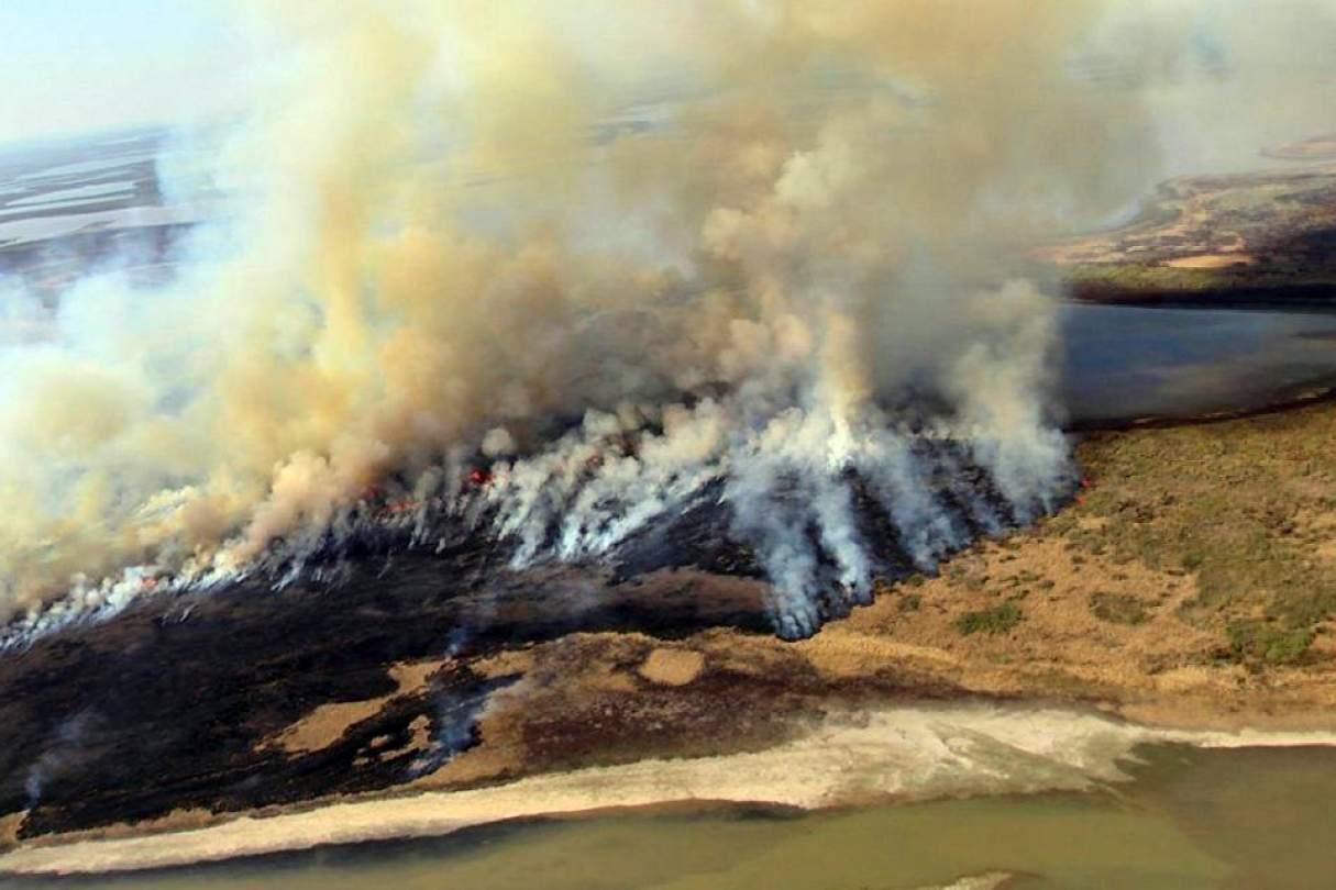 Diputados buscan prohibir la venta de terrenos incendiados por 60 años