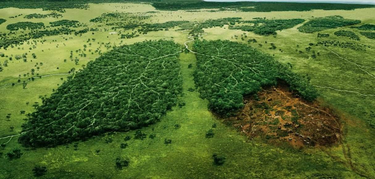 Ministerios públicos de todo el país debaten sobre derecho ambiental