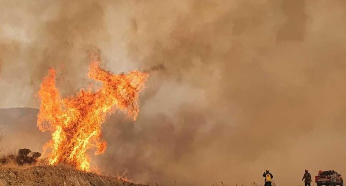 Declararon Emergencia agropecuaria en Córdoba