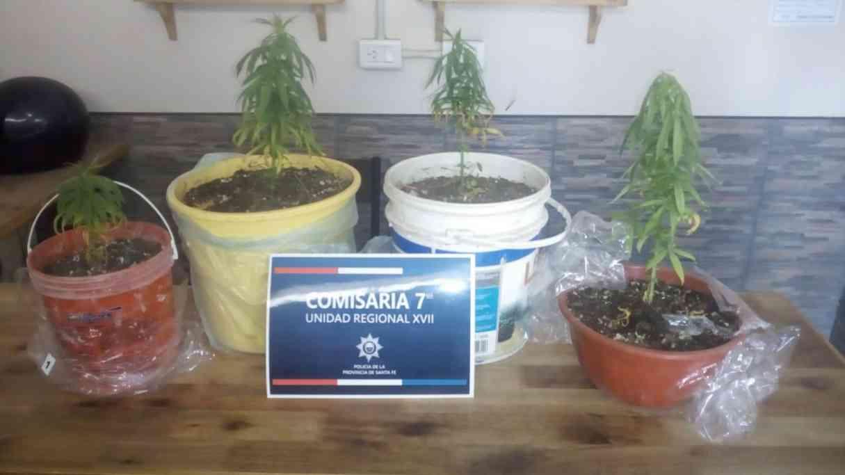 San Lorenzo: allanaron un domicilio en busca de armas y encontraron marihuana