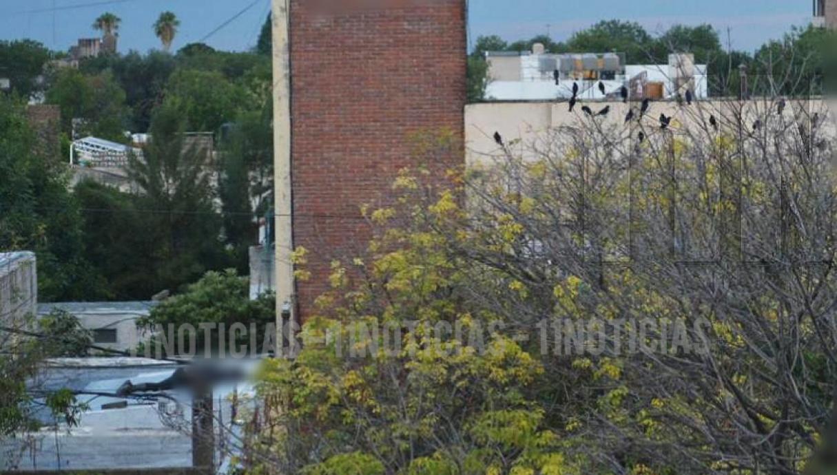 Hallaron un cuerpo en descomposición arriba de un techo de un comercio de San Lorenzo