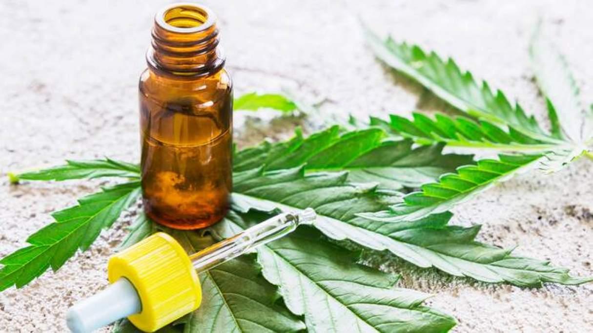 Cannabis medicinal: Autorizaron el cultivo y la venta de aceites en farmacias de todo el país
