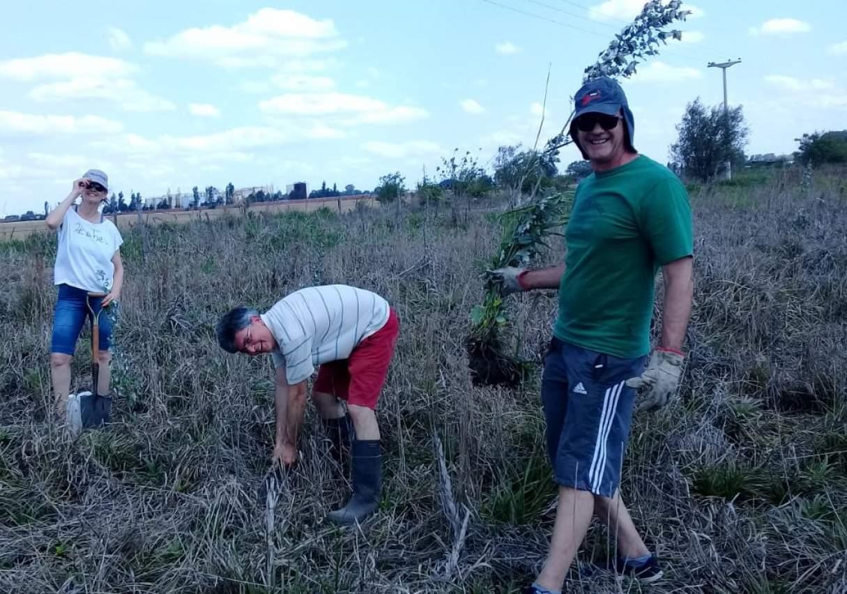 Plantaron 20 árboles a la vera de la Autopista en Capitán Bermúdez