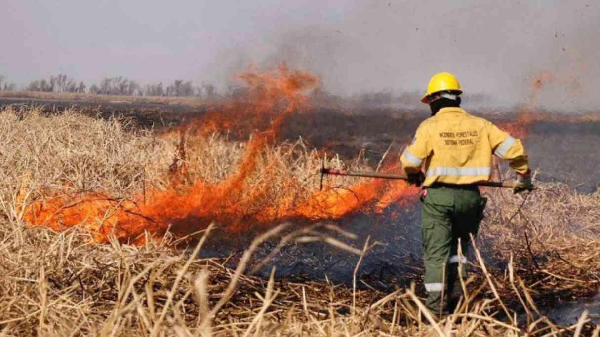 Ponen a disposición Fábrica Militar como base operativa para combatir los incendios de las islas